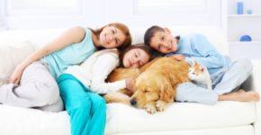 beneficiile copiilor care cresc cu animalele de companie