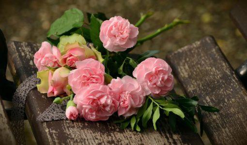 plantare trandafiri toamna